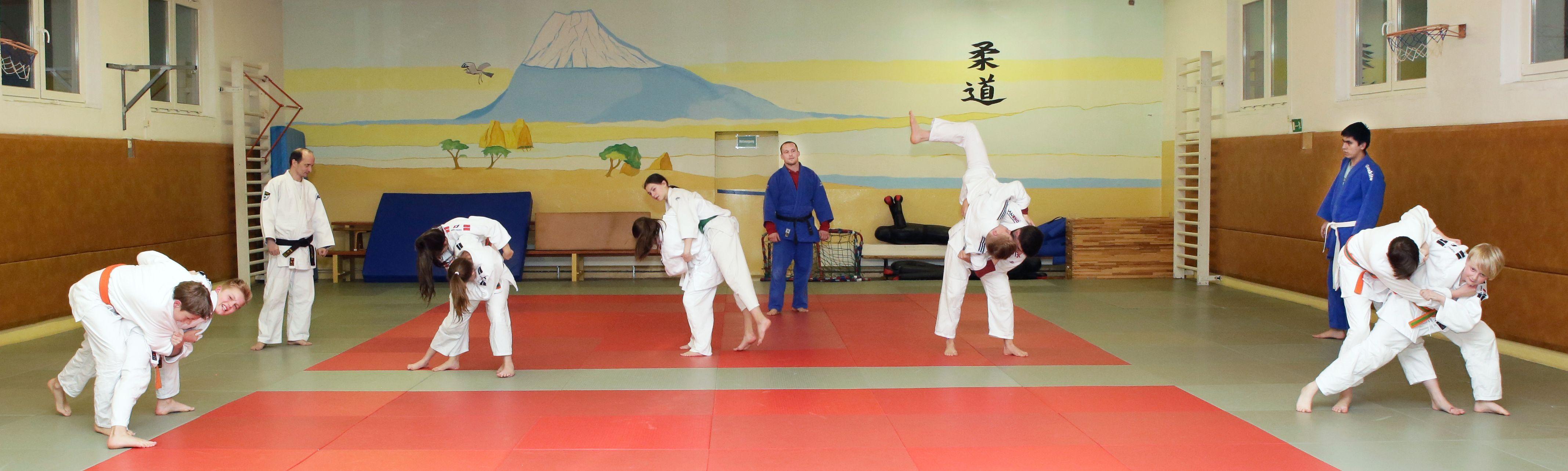 Slider3_Judo-compressor
