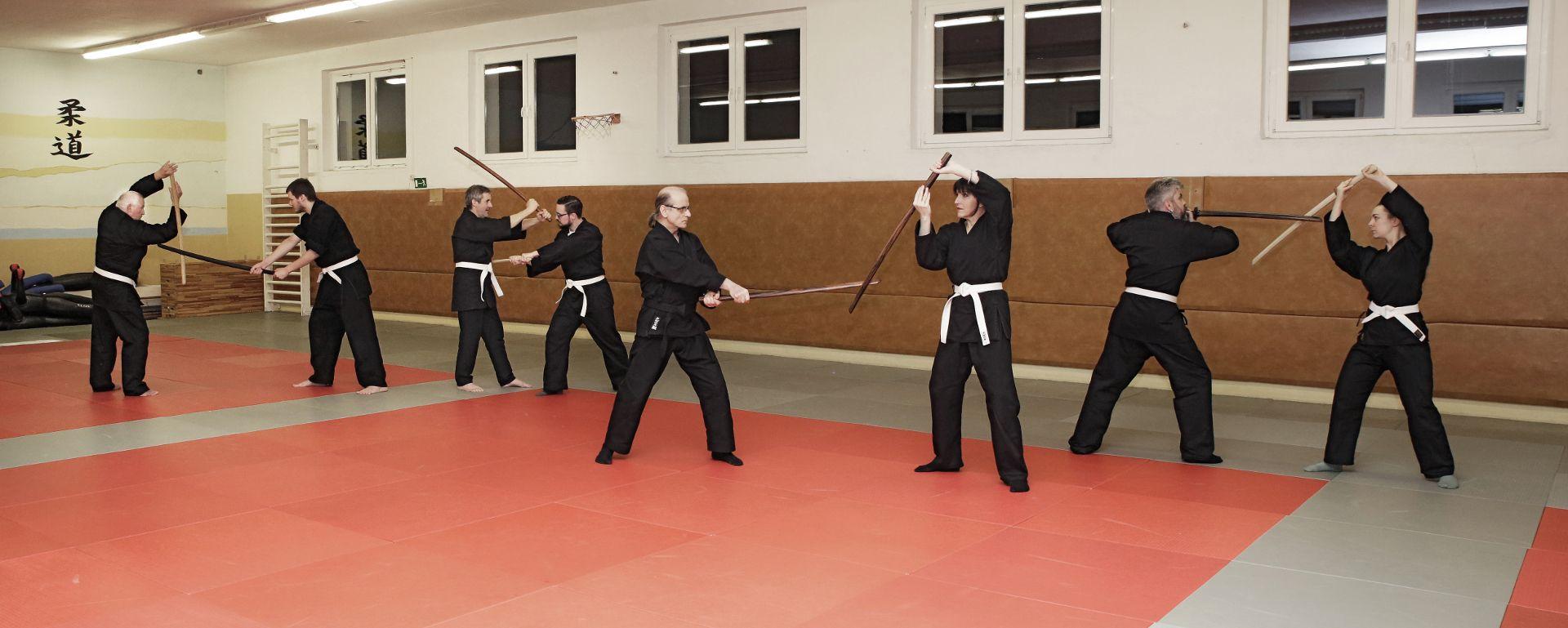Kenjutsu - Training